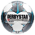 Derbystar Brillant APS 2019