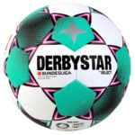 Derbystar Brillant APS 2020