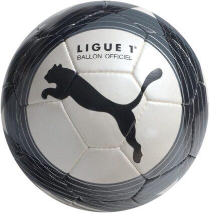 Puma Ligue 1 09-10