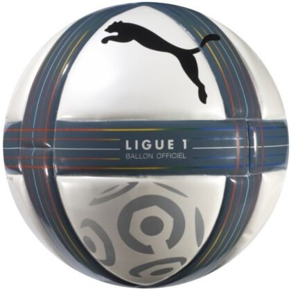 Puma Ligue 1 10-11